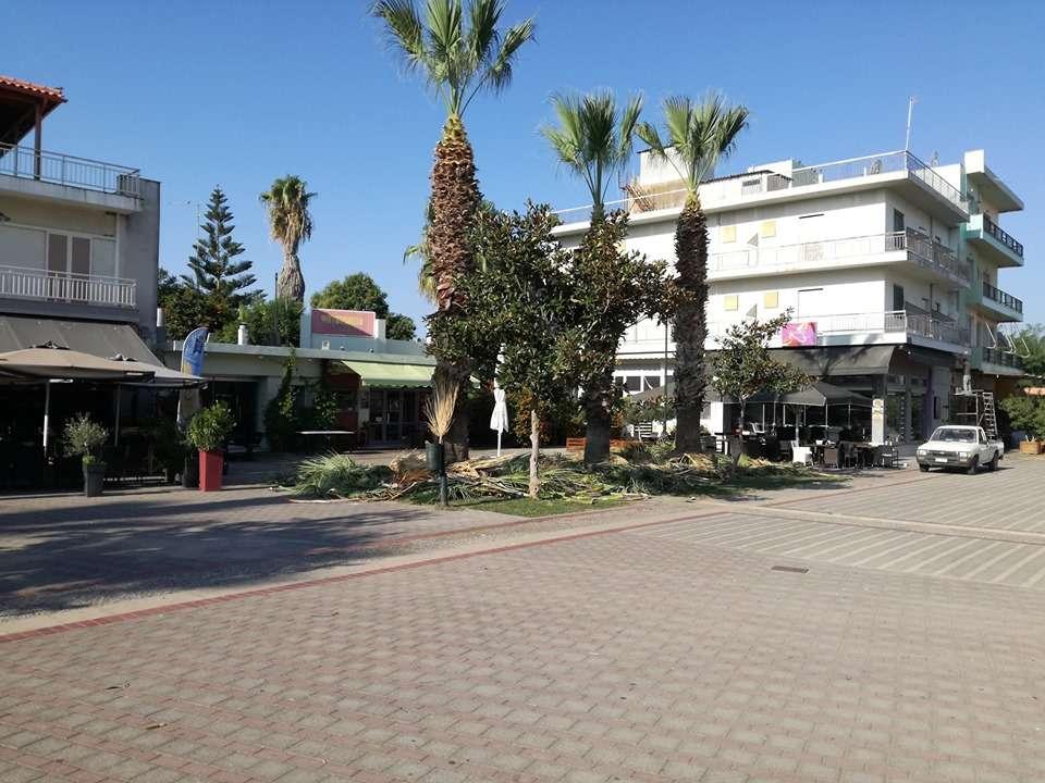 Δήμος Πηνειού: Η καθημερινότητα του πολίτη στο επίκεντρο της νέας Δημοτικής Αρχής (photos)
