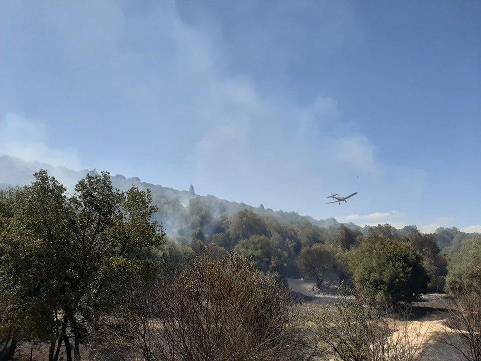 Πυρκαγιά στα όρια Ηλείας – Αχαΐας - Σε δασική έκταση κοντά στην περιοχή Αγίας Τριάδας Λασιώνος